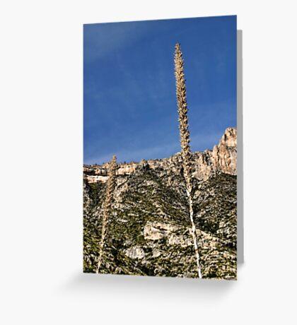 McKittrick Canyon (10) Greeting Card