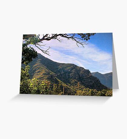 McKittrick Canyon (11) Greeting Card