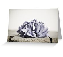 faded colors Greeting Card