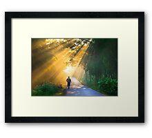 Showering rays  Framed Print