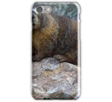 Marmot iPhone Case/Skin