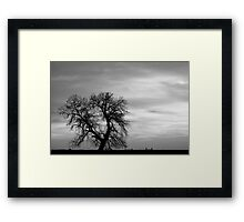 Black and White Country Morning Framed Print