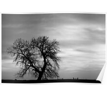 Black and White Country Morning Poster