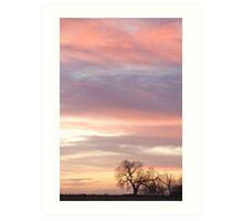Soft Morning Countryside Sunrise Art Print
