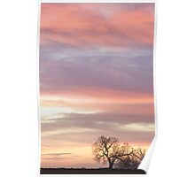 Soft Morning Countryside Sunrise Poster