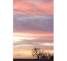 Soft Morning Countryside Sunrise Photographic Print