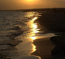 Sunny summer beach sunset by Sezbomb