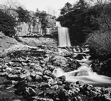 Thornton Force In Mono by Mark Dobson