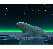 Ice Edge Photographic Print