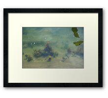 Underwwater Garden Framed Print