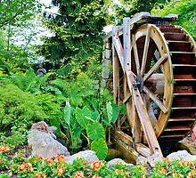 Garden's Wheel by mrthink