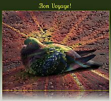 Bon Voyage - Greeting Card for Bird Lovers by BlueMoonRose