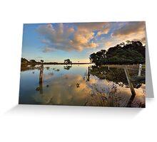 Waiaro Mangrove Reflections Greeting Card