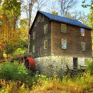 Millbrook Grist Mill by Pat Abbott