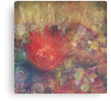 Cactus Flower Textured Canvas Print