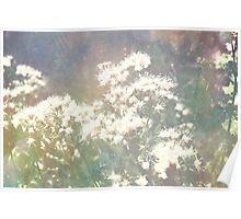 flower textured Poster