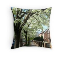 Spring afternoon in Bronx, New York City Throw Pillow