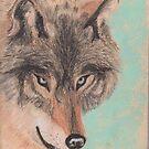 John's Wolf by Hilary Robinson