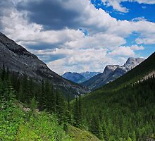 Valley view from Galatea by Michael Collier