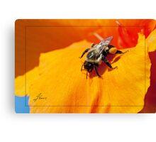 Pollen Fuel Canvas Print
