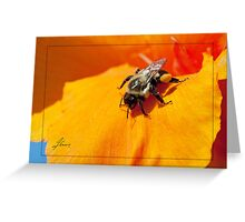 Pollen Fuel Greeting Card