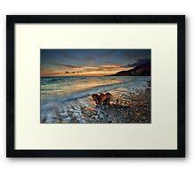 Coromandel Driftwood Framed Print
