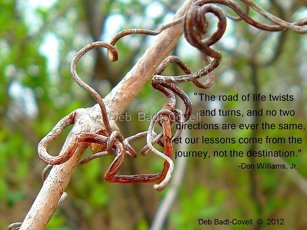 Twists N Turns by Deb  Badt-Covell