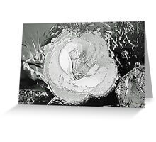 Flower in the dark   Greeting Card