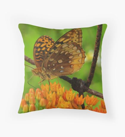 Great spangled fritillary on Butterfly Weed Throw Pillow