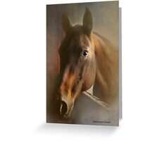 The Mare in the Barn Door Greeting Card