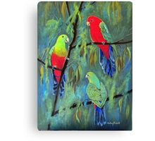 male and female king parrots Canvas Print