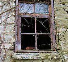 Barn Basement Window by Ron Russell