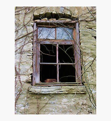 Barn Basement Window Photographic Print