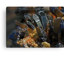 Family of Smokey Quartz Crystals Canvas Print