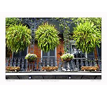 French Quarter Balcony Photographic Print