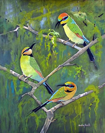 rainbow bee eaters by Audrey  Russill