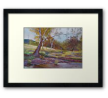 Beside the Creek Framed Print