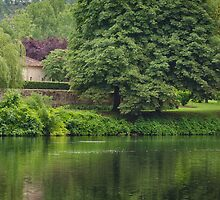 Serenity on the River Lot, Albas, France by Karon Grant