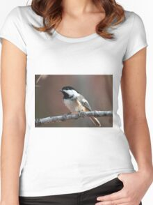 Tiny bird with so much presence Women's Fitted Scoop T-Shirt