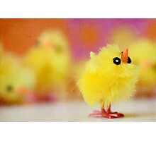 Easter Chicky Babe Photographic Print