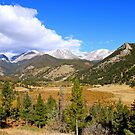 Autumn in the Mountains by Joy Fitzhorn