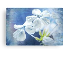 For Helena Canvas Print