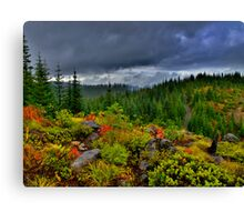A Peek Over The Top Canvas Print