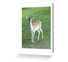 Sweetie Face Greeting Card