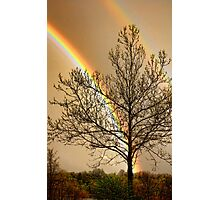 Front Yard Rainbow Photographic Print