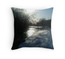 A perfect winters stroll Throw Pillow