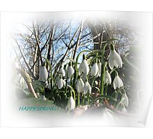 Happy Spring! Poster