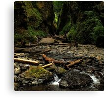 Oneonta Gorge ~ Part Two Canvas Print