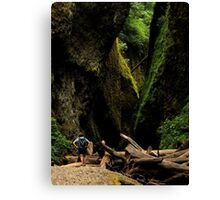 Oneonta Gorge ~ Part Three Canvas Print