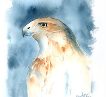 The Magnificent Hawk by arline wagner